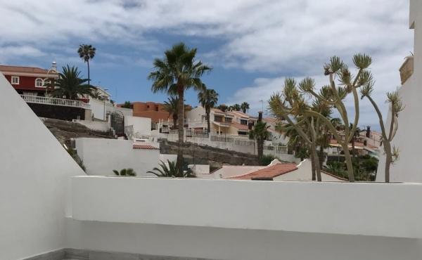 Comprare casa alle canarie prezzi case in vendita canarie acquistare appartamenti ville - Bagno coi delfini tenerife ...